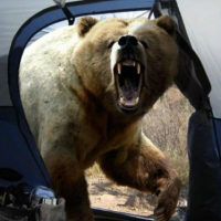 This Pissed-Off Bear Is The Last Thing A (Now Deceased) Nature Photographer Ever Photographed