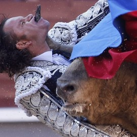 Bullfighting in the Age of Hardcore Internet Porn: Prancing Matador Penetrated Orally In Front Of Thousands of Spectators...What's Next? ATM?