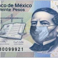 No, I'm Not Dead: Swine Flu Dispatch From Mexico
