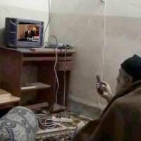 The War Nerd: Osama Porn